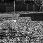 Jesienne podwórko, fot. Piotr Kubic