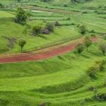 Wzgórza w Transylwanii, pejzaż, fot. Piotr Kubic